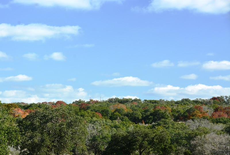 Autumn at the Eads Ranch - 021b.jpg