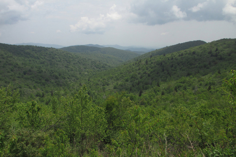 Graveyard Ridge Trail (5,550')
