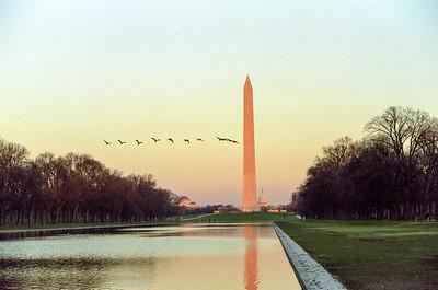 Washington DC area