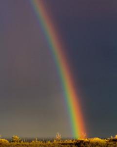 RainbowBackyardErieCO-001