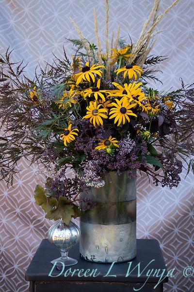 Rudbeckia fulgida var. sullivantii 'Goldsturm' arrangement_2182.jpg
