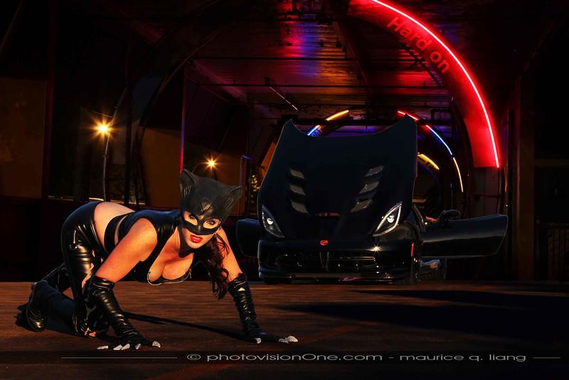 Catwoman's Ride.  2014 Viper TA.  Model: Daneen