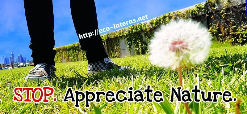 2012, Appreciate Nature