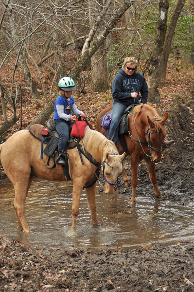 horse-riding-0167.jpg