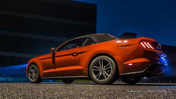 Mustang - Hickory NC