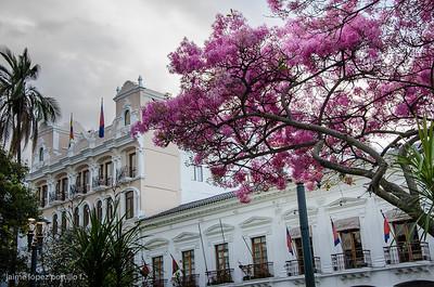 Centro de Quito