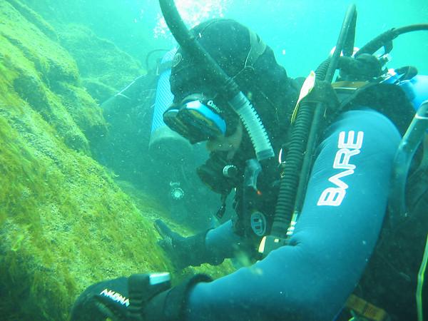Diving - Plongée