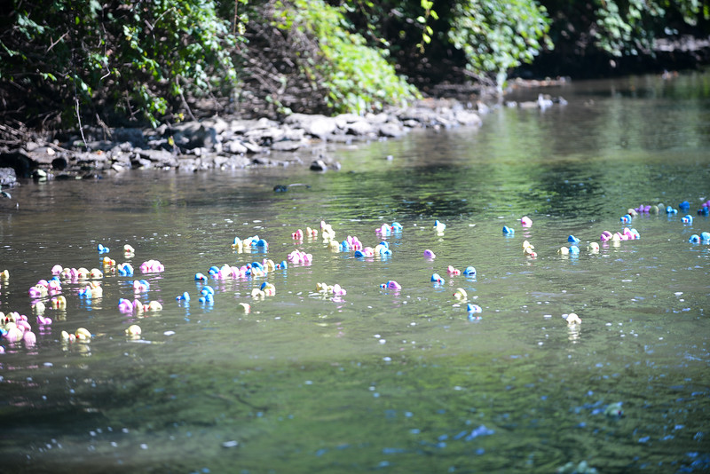 Riverwalk Duck Race 20162016081692-55.jpg