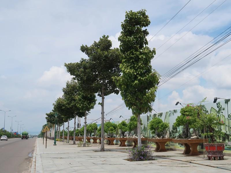 Mui Ne Summerland - Vo Nguyen Giap frontage