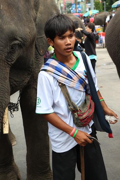2014-11-14 Surin Elephant Welcome Feast 731.JPG