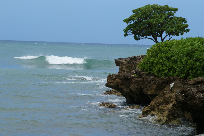 North Shore - Turtle Bay