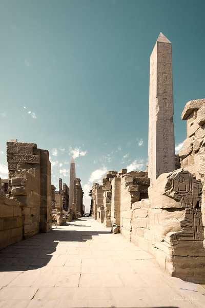 luxor-karnak-chicago house_20130222_7330.jpg