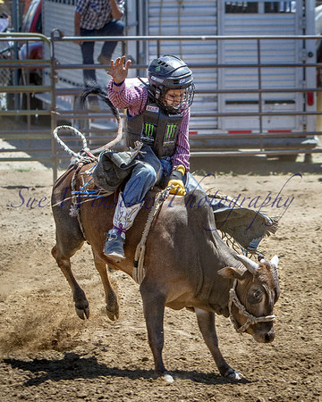 Big Hope Little Rodeo 2014