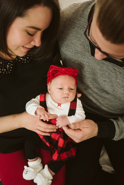 Schmidt Christmas Mini Session 2018-8.jpg