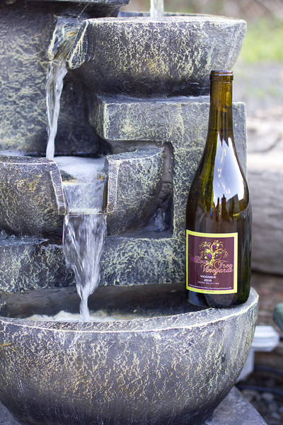 Willow Tree Winery (14 of 23).jpg