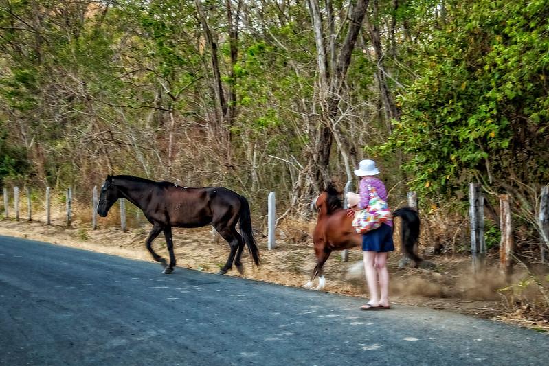 Costa Rica 2016 20160406-18-38-_MG_2919-006-Edit.jpg