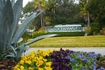 Oceanwalk