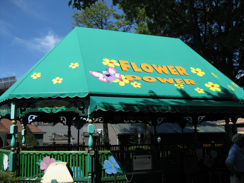 Flower Power's new roof  sign.
