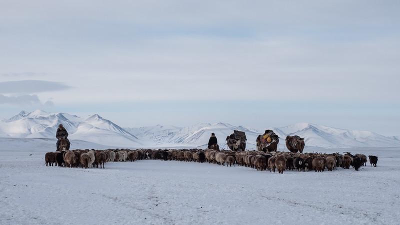 Mongolia - 2020 -18.jpg