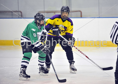 L.V. Whalers VS Beerclams Gold