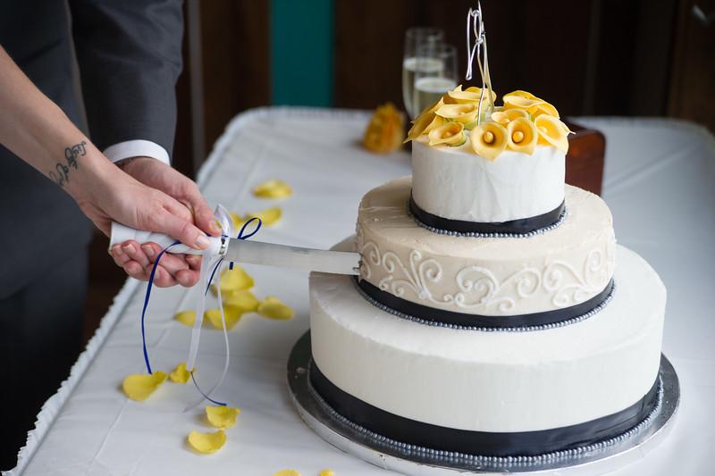bap_schwarb-wedding_20140906152558_D3S1604