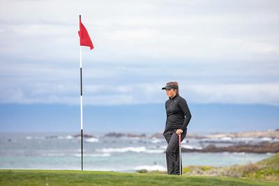 MS Golf