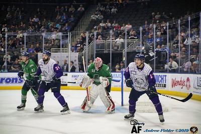 Florida Everblades Vs Jacksonville Icemen 03/03/2019