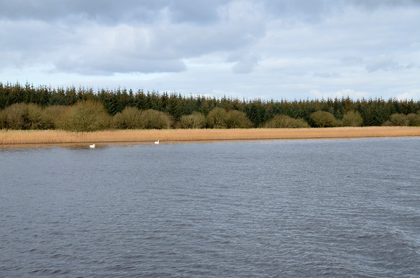 """2012-02-17 """"Arthur"""" cruises to Banagher for first time in 2012"""