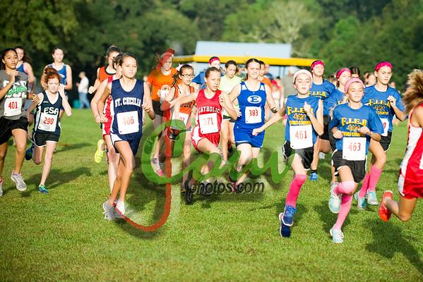 2014 Middle School Girls Race
