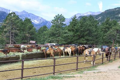 RMNP2010-HorsebackRiding