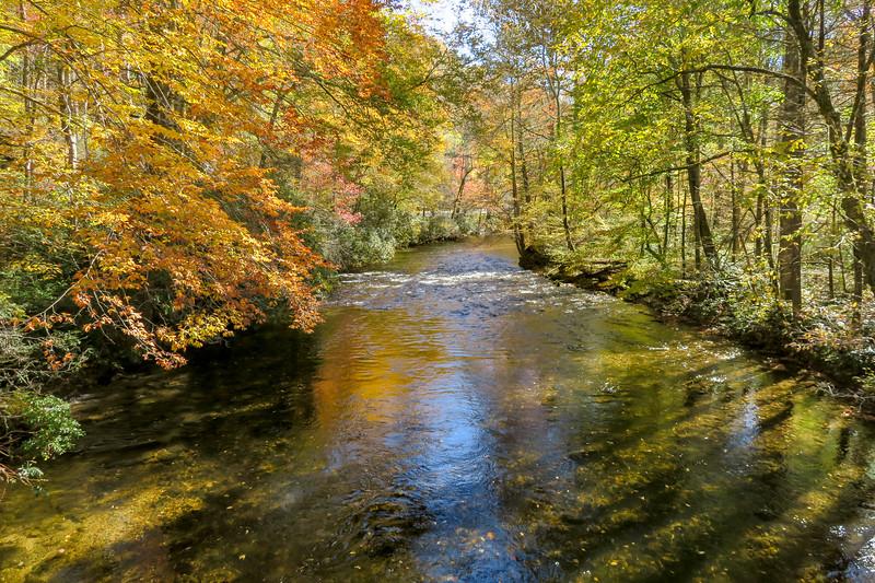 Art Loeb-Davidson River Loop, Transylvania County (11-3-18)