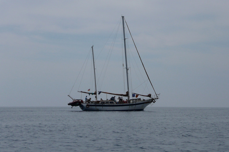 It Could Be Your Sailboat. Isola d'Elba