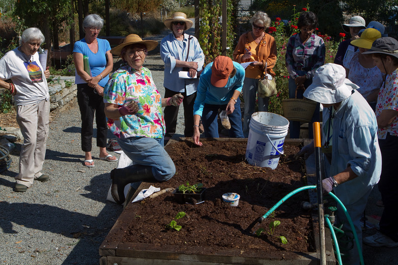 A general planting session began with participants adding more plants and seeds to the mix.  Again, watering everything down is important.