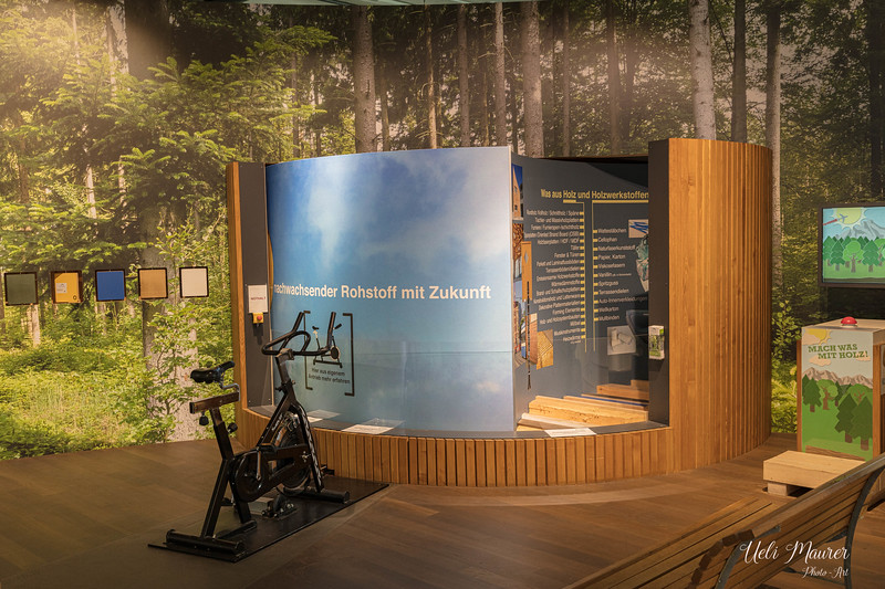 2019-09-27 Umweltarena Spreitenbach - 0U5A9260.jpg