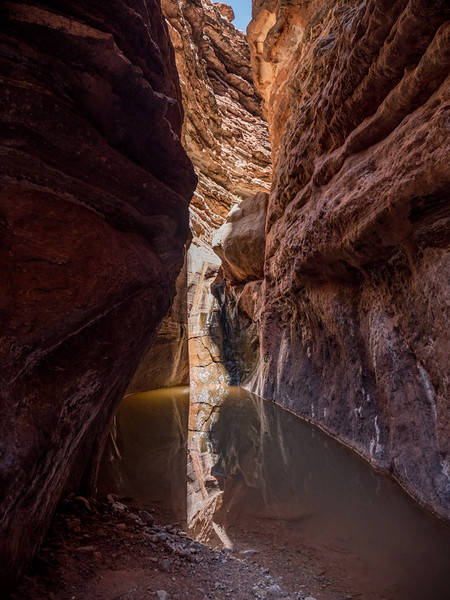 Grand Canyon-147.jpg