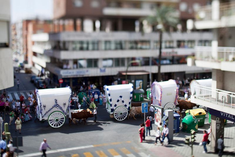 Pilgrims to El Rocio on Republica Argentina avenue, Seville, Spain. Tilted lens used for shallow depth of field.
