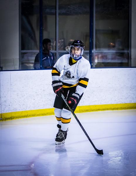 Bruins-6.jpg
