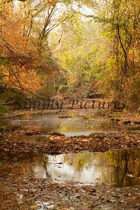 Banita Creek118