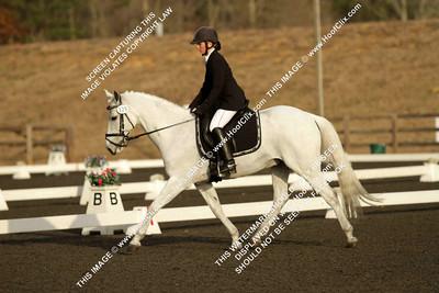 BortmasWoodlands Silver Star#129OT