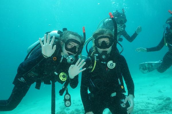 Grade 10 - Diving