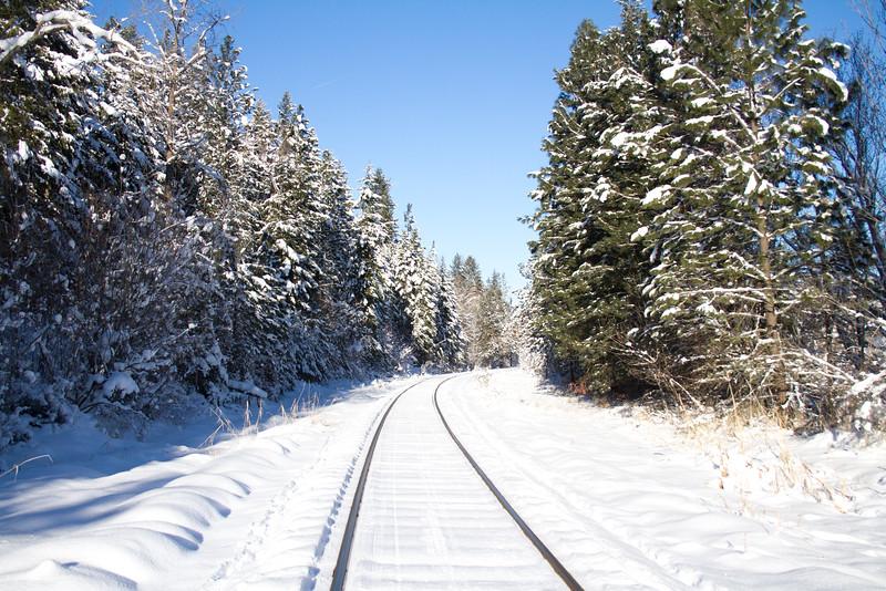 winter 2015-9818.jpg