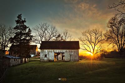 Cove Farm - 4.8.17