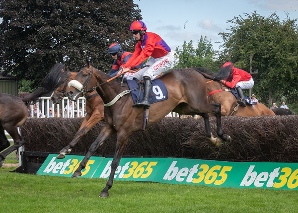 Uttoxeter Races - Wed 14 July 2021