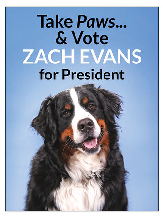 Zach Campaign Poster