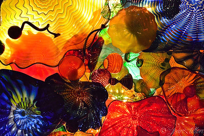 Chihuly The Seattle Glass Garden
