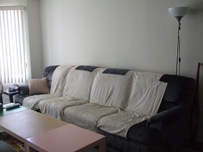 2009.06.28 Sofa