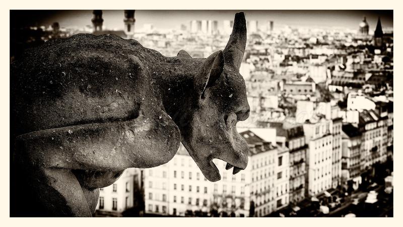 Notre-Dame_20150219_0134--B&W.jpg