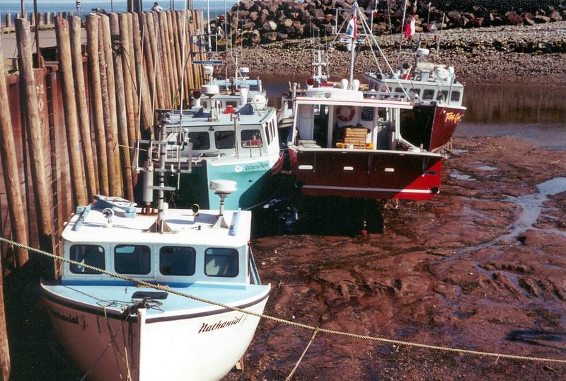 Boats at Bay of Fundy.jpg
