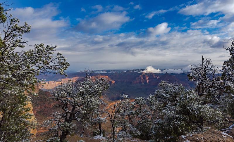 Grand Canyon-6367.jpg