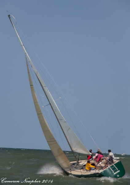 Falcon Cup 2014 -65.jpg